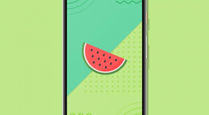 Freshy – Wallpapers